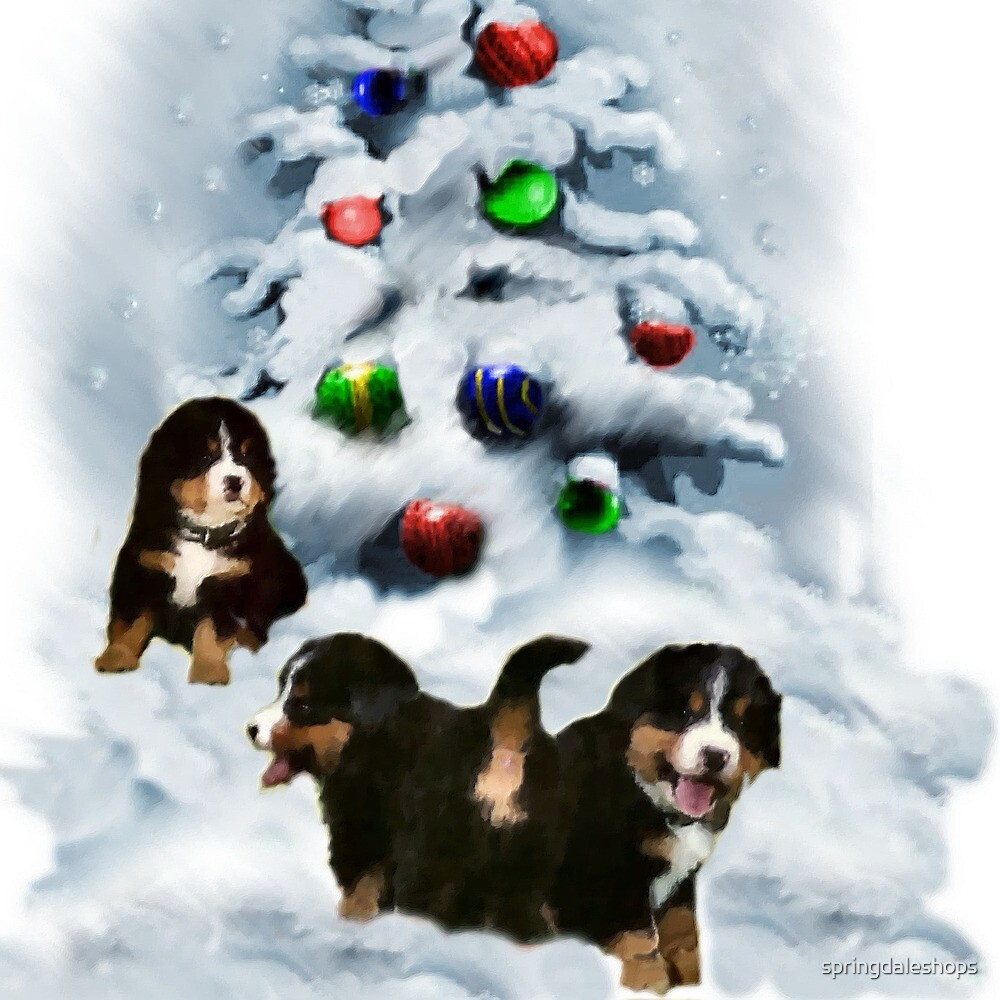 Bernese Mountain Puppies Christmas Art Gifts by springdaleshops