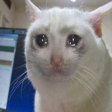 Sad Cat by adjua