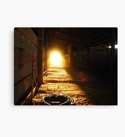 Sunlight at the end.... Canvas Print
