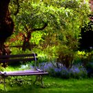 Garden Bench Surrounded by Beauty   by Monica M. Scanlan
