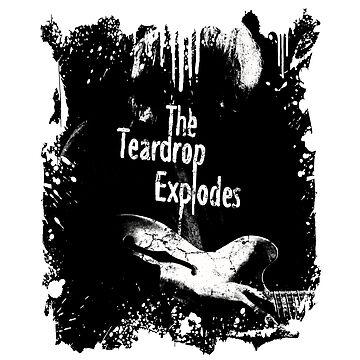 Teardrop Explodes by gorgeouspot