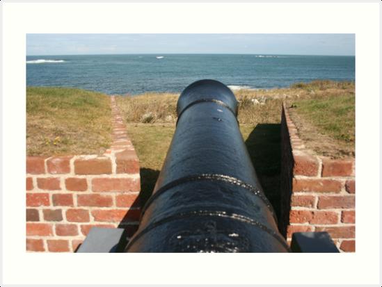 Cannon by whackycat