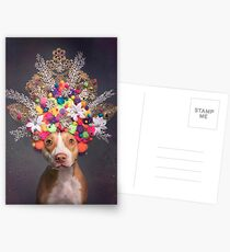 Flower Power, Frida Postcards