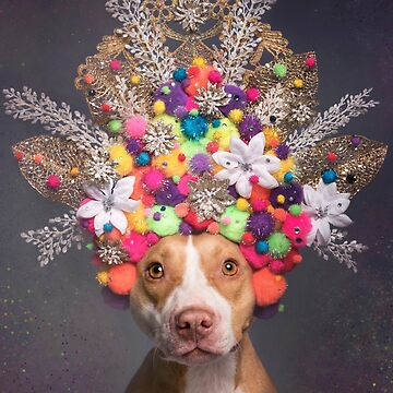 Flower Power, Frida by SophieGamand