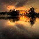 Daybreak by Martin Griffett