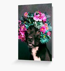 Flower Power, Kaylee Greeting Card