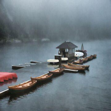 Foggy Morning At The Lake by JudyPalkimas