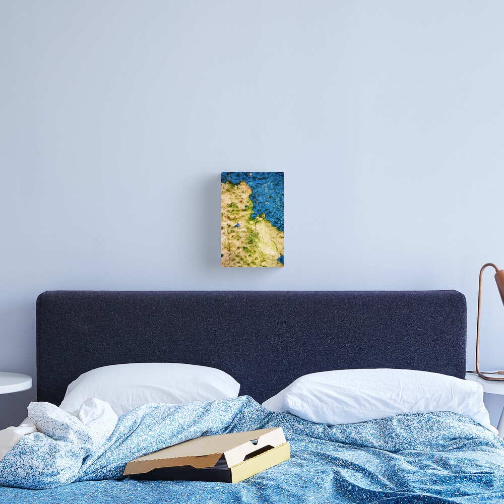 Land & Sea Canvas Print