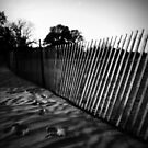 fence on the beach by Angel Warda