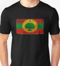 Flag of Ethiopia Pride Amharic Oromo Amhara Oromiffa Addis Ababa Mens T-shirt