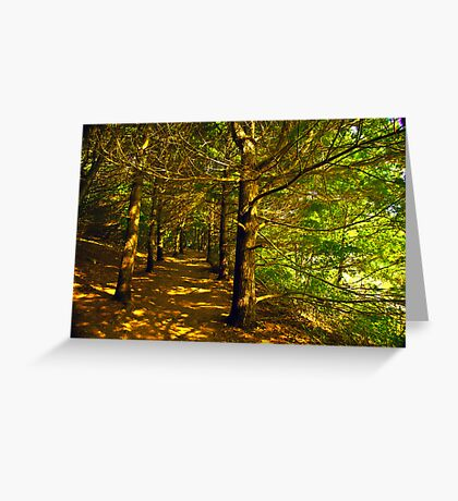 Follow the  trail  Greeting Card