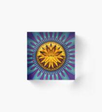 Gold Coin Acrylic Block