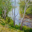 Morning on Darebin Creek, Alphington by Dai Wynn