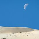 Moon over Dunes by JulieM