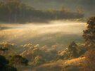 """Gentle Dawn"" by debsphotos"