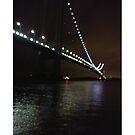 Verrazano Narrows Bridge, #Verrazano, #Narrows, #Bridge, #VerrazanoNarrowsBridge, #VerrazanoBridge, #NewYorkCity, #NewYork, #Brooklyn, #StatenIsland, #water, #night by znamenski