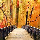 Forest Fantasia by Jessica Jenney