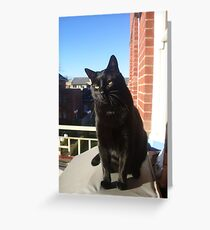 Balcony Bill Greeting Card
