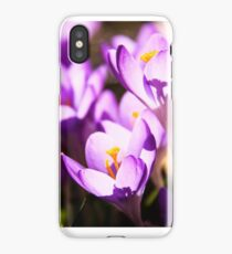 Stained glass petals iPhone Case/Skin