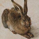 Feldhase...Albrecht Dürer..1502 by edsimoneit