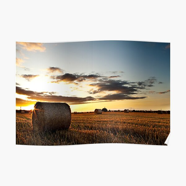 Make hay while the sun shines Poster