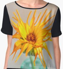 Sunshine Lady Chiffon Top