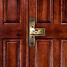 The Door by Alina Holgate