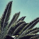 Palms by RichCaspian
