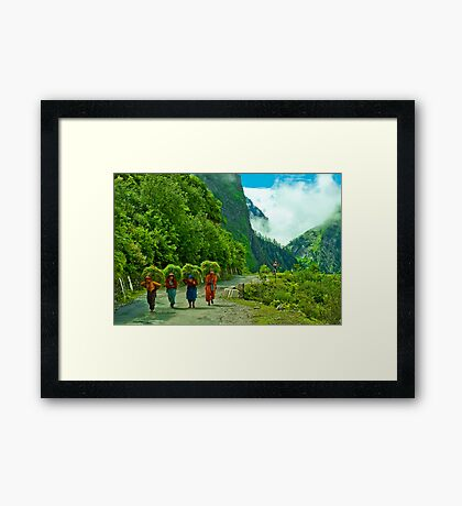 Nature's Beauty around Badrinath Framed Print