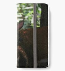 Mother and Fawn iPhone Wallet/Case/Skin