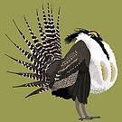 Gunnison Sage-Grouse (support the Bird Conservancy of the Rockies) by BennuBirdy