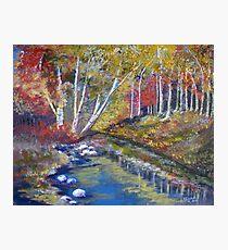 Nature's paint brush Photographic Print
