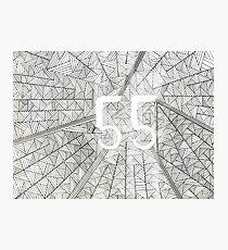 55 Birthday Pattern Photographic Print
