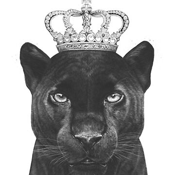 The King Panther by kodamorkovkart