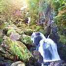 Lodore Falls by Gillen