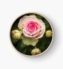 heirloom rose Clock
