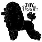 Toy Poodle by aheadgraphics