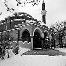 Banya-bashi Mosque by Rae Tucker