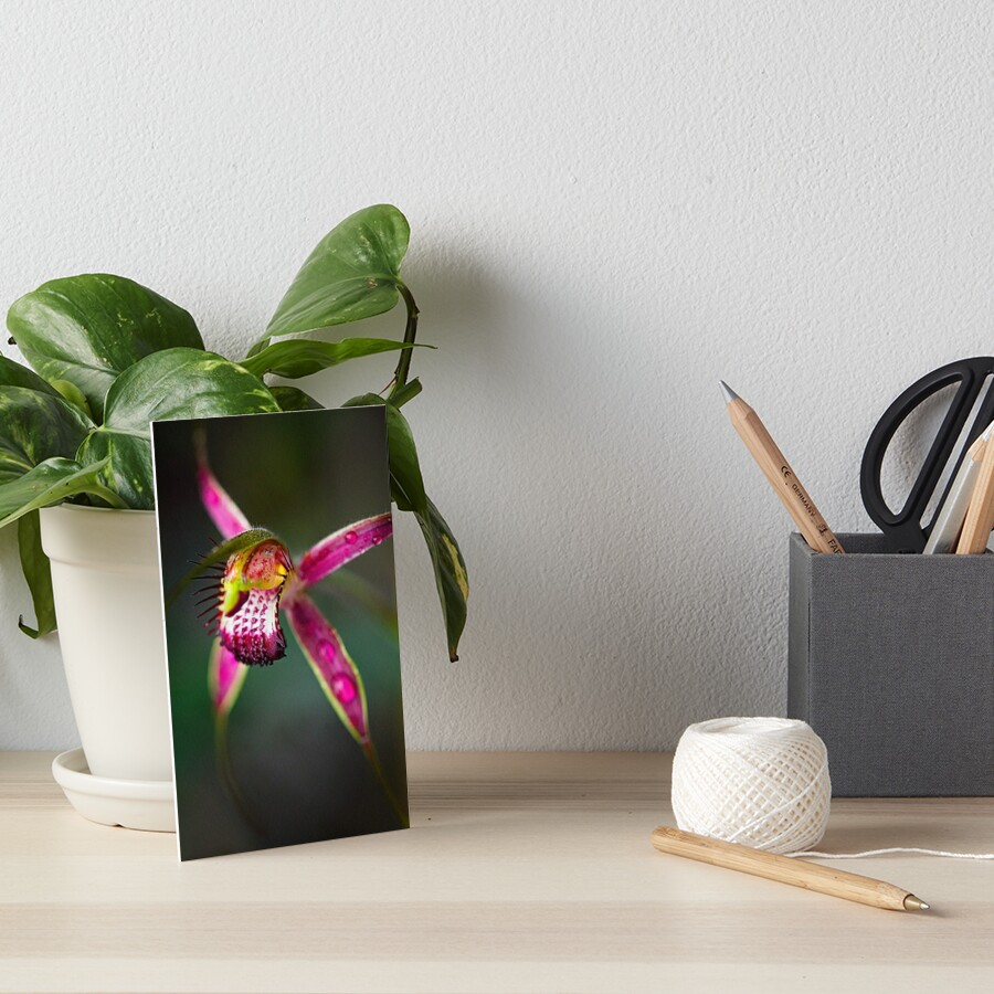 Carousel Spider Orchid Art Board Print