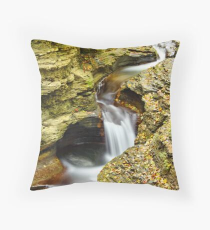 Curvy Throw Pillow