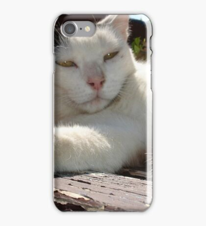 Black and White Bicolor Cat Lounging on A Park Bench iPhone Case/Skin
