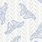Fly Blue Lacy Fly by PolkaDotStudio