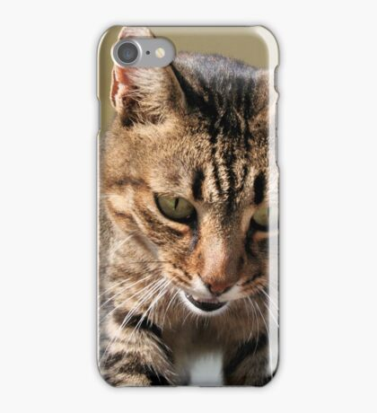 Tabby Cat Looking Down From A Height iPhone Case/Skin