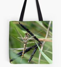 Variegated Meadowhawk Hanging on Seed Pod Tote Bag