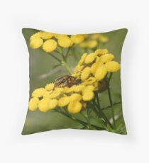 Pensylvania Leather-wings Throw Pillow