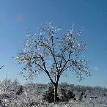Ice Storm Tree by dekomsyrokcih