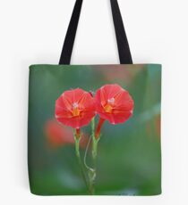 Red Morning Glory - Ipomoea coccinea Tote Bag