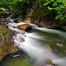 Seven Falls by Stephen Beattie