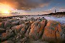 Eddystone Point Lighthouse, Tasmania, Australia by Michael Boniwell