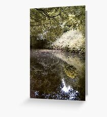 Reflections in nature Greeting Card